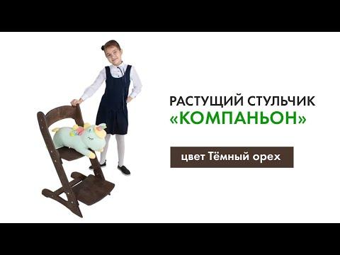 Растущий стул ДВИЖЕНИЕ - ЖИЗНЬ Компаньон цвет Орех