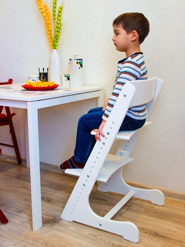 Стул для письменного стола для школьника: особенности выбора и лучшие модели